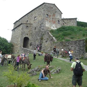 La sosta presso il Castello di Gressa: e anche qui gli asinelli trovano come passare il tempo!