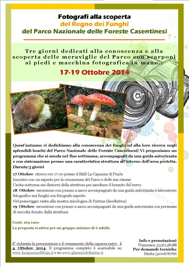 funghi  FRAJA 2014 autunno 2014 17-19 Ottobre