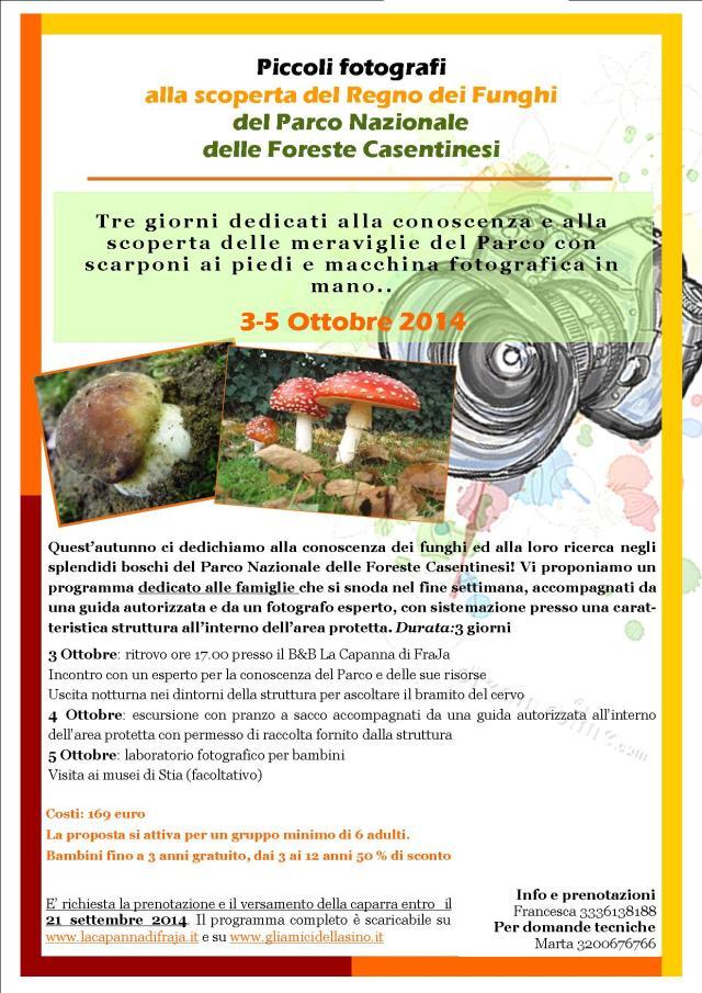 funghi  FRAJA 2014 autunno 2014_bambini 3-5 Ottobre