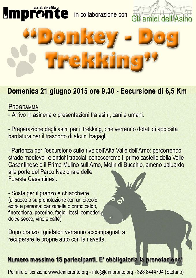 Donkey dog trekking 2015