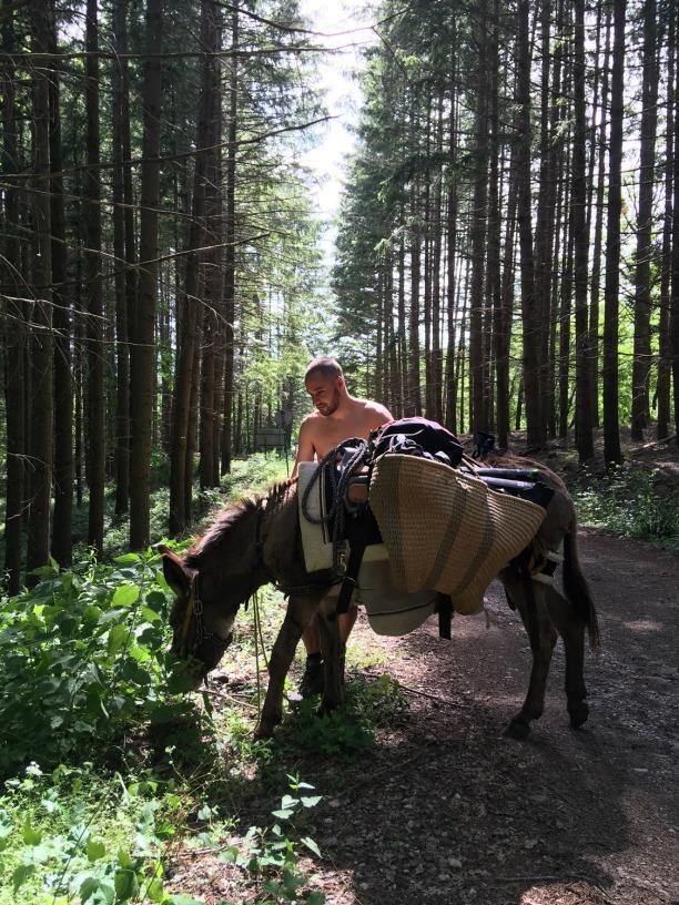 Trekking self guided